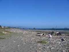 Beach @ Crescent City