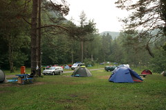 tent, camping, park,
