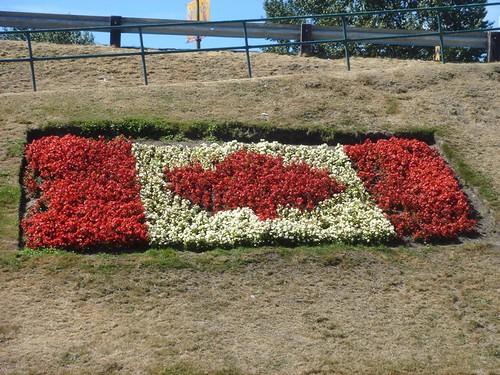 Canadian Flag flower bed