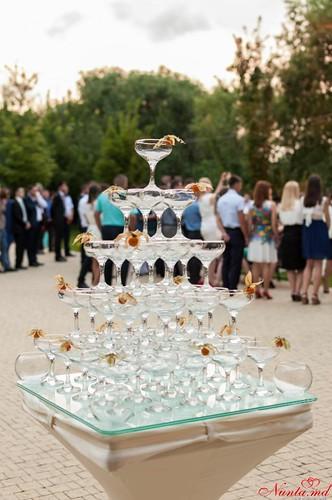 Свадебный коктейль-бар > Феерическое предложение от MobileBar.md