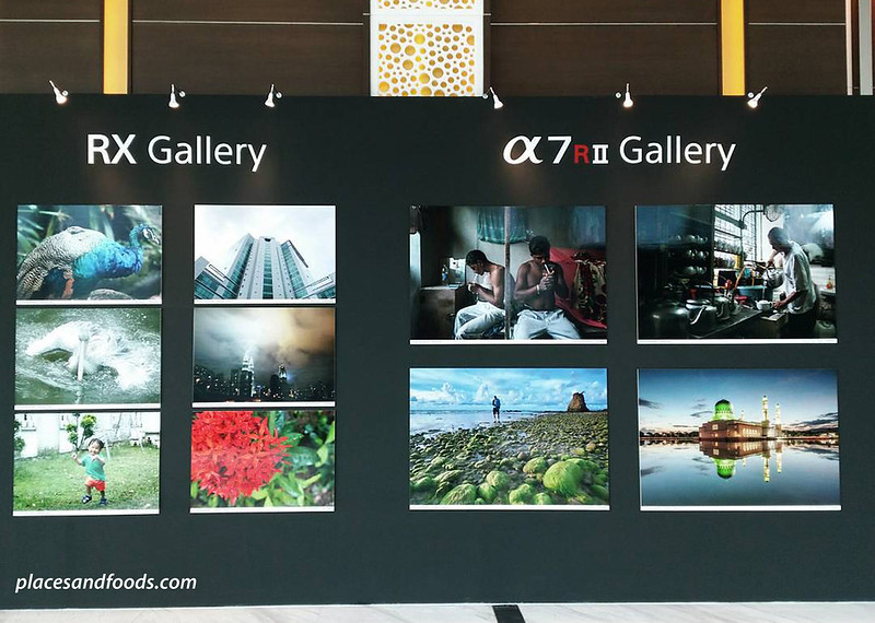 sony experience rx gallery