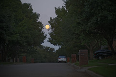 Morning after the eclipse