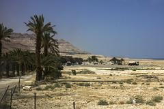 Dead Sea & Jordan Rift Valley 027
