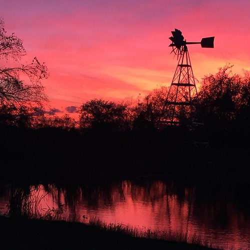 sunset windmill square pond texas farm squareformat iphoneography instagramapp uploaded:by=instagram
