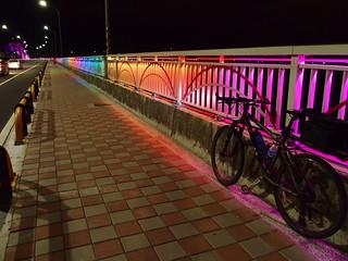 Bald Cypress Bike Trip