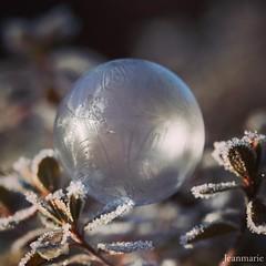 Bubble Freeze