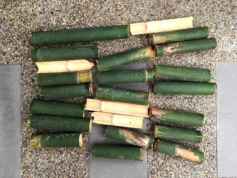 Cut Bamboo 05/01/2017