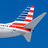 the Airlines: American Airlines group icon