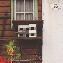 Cute bird house (possibly) plus love the local government issue house numbers (see top right). Every house has one, says the name of town, house number and street name.