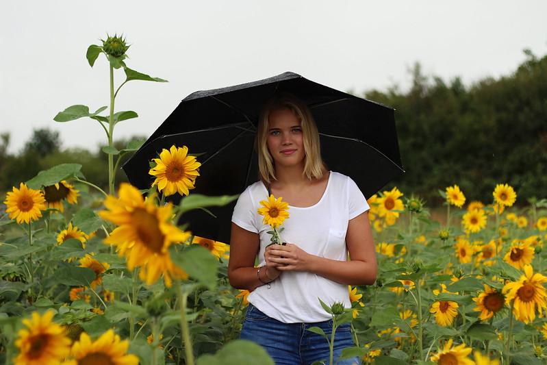 Sonneblumenfeld Alisha September 2015 233gimp
