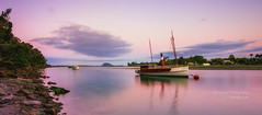 muzzpix-nz posted a photo:Facebook    | 500px  | WebsiteThis is boat actually called The Swan and i know nothing about it apart for  the fact that its been part of the line-up of boats anchored in this estuary for donkeys years ! It is well loved tho ...