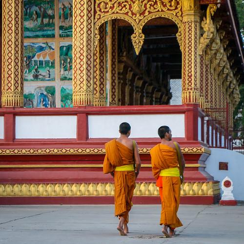 Monks in Wat Manorom, Luang Prabang, laos ルアンパバーン、ワット・マノーロムを歩く僧たち