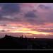 Small photo of Sony Panoramic Sunrise
