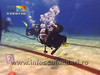 NAUI Scuba Diver - curs scufundari pentru incepatori