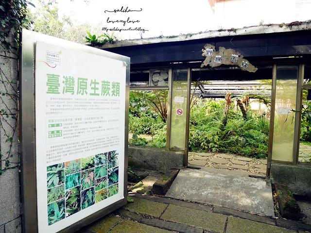 陽明山一日遊免門票景點花卉試驗中心 (26)