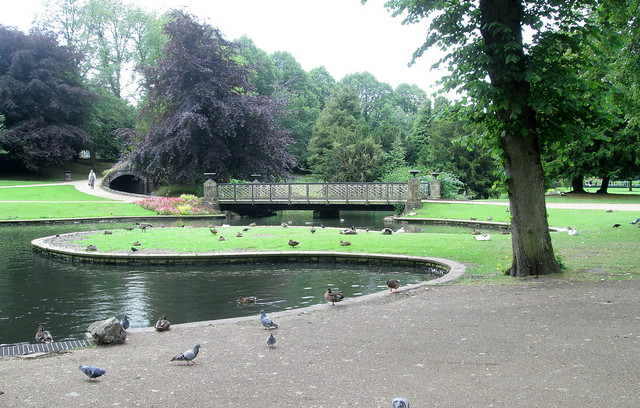 Buxton Park Bridge