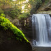 Good Morning Looking Glass Falls - 1953 by J & W Photography