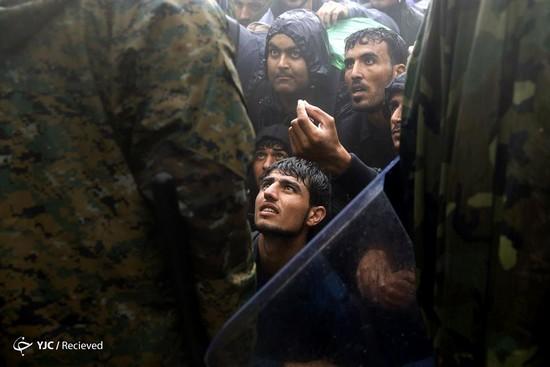 叙利亚中产变难民