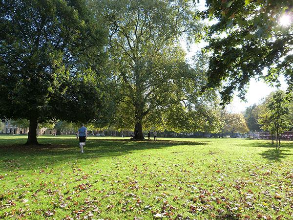 Lambeth road park