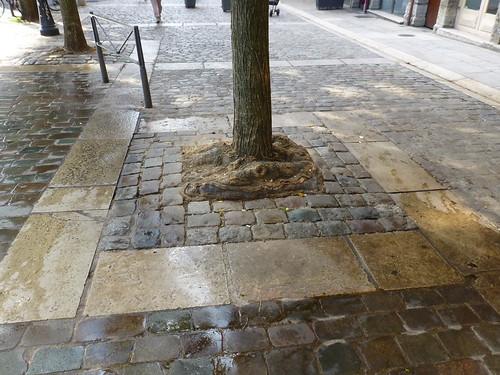 Nachhaltige Stadtentwicklung Lyon
