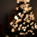 choose a star and make a wish