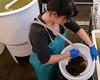 Sarah sieving oyster larvae