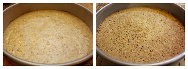Amalfi Pear & Ricotta Cake - 39