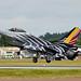 F-16 Falcon by Bernie Condon