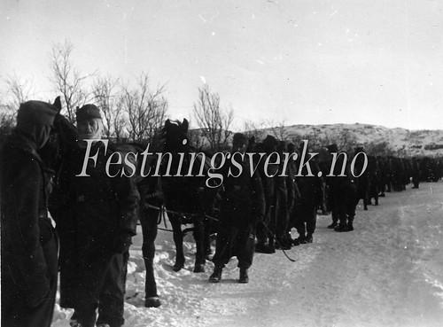 Finnmark (611)