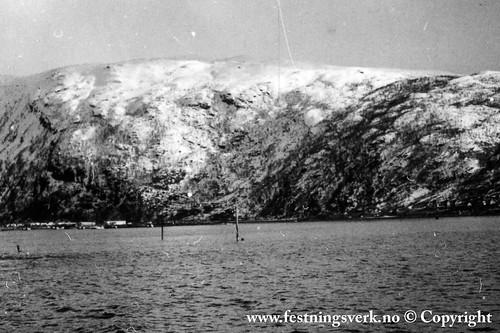 Narvik (2103)