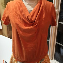 neck(0.0), brown(0.0), collar(0.0), maroon(0.0), t-shirt(0.0), orange(1.0), textile(1.0), clothing(1.0), sleeve(1.0), outerwear(1.0), peach(1.0), blouse(1.0),