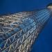 Tokyo Sky Tree by CARLORICCI