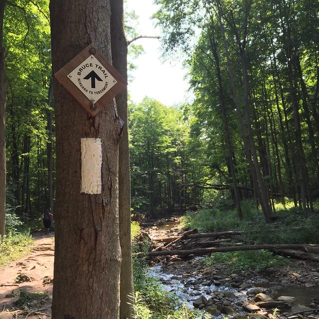 Le Bruce Trail est un sentier de randonnée pédestre bien balisé...