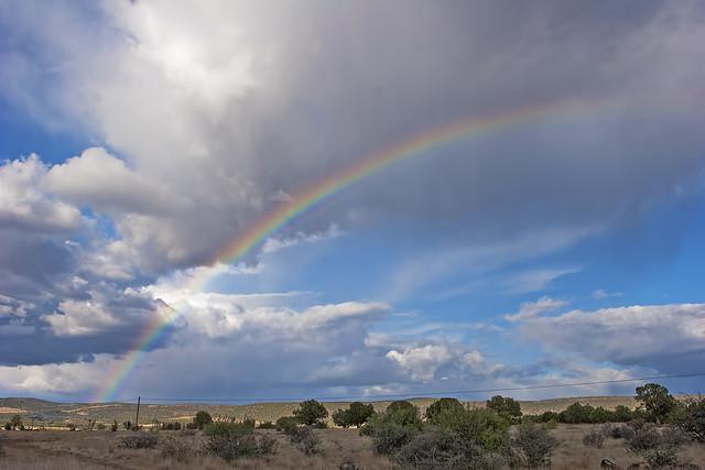 Rainbow _20d_101015