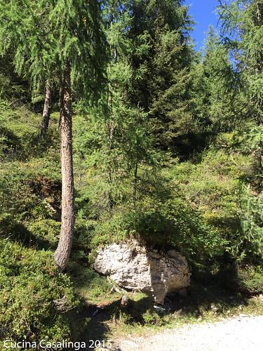Bad Moos Rotwand Weg 2