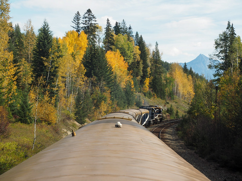 Fall colors seen from aboard the Rocky Mountaineer