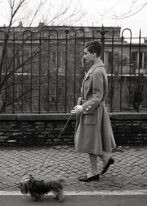 Hepburn41