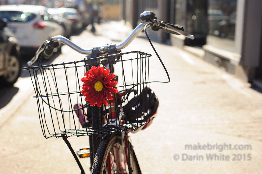 UTW_flower_bike-037