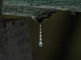 Tiny Icicle Water Droplets Tele Macro IMG_4744