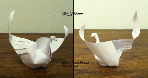 ORI_Q Swan