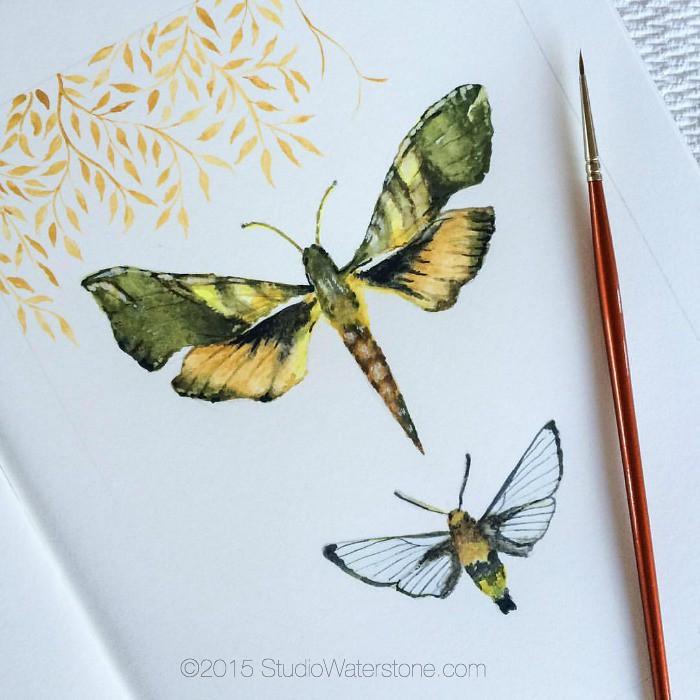 Sketchbook: Insta Buggy
