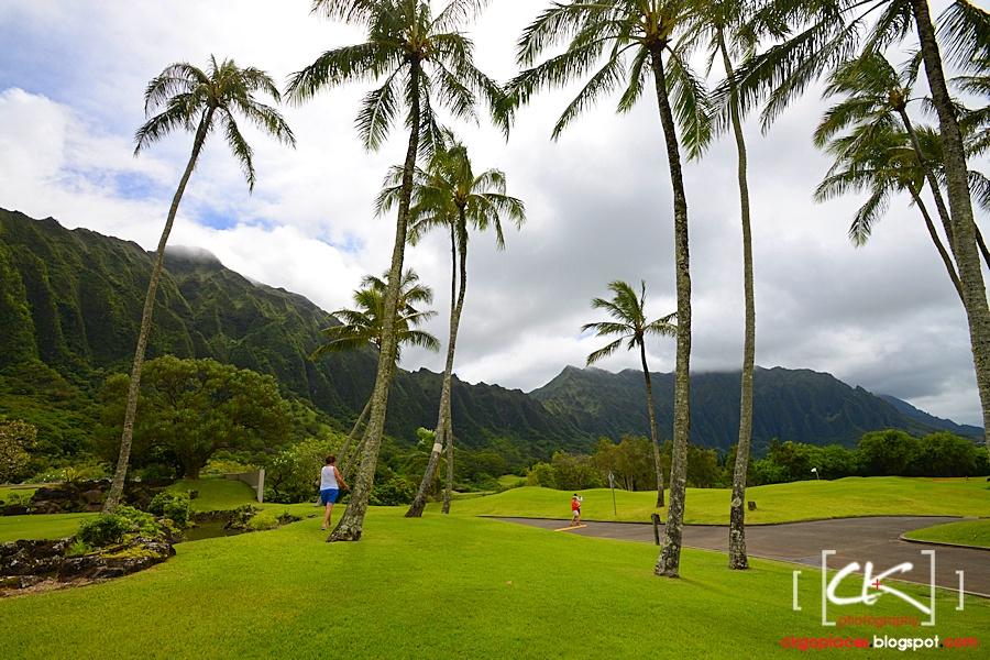 Hawaii_0183