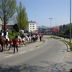 2011 OKV Sternritt OFFA