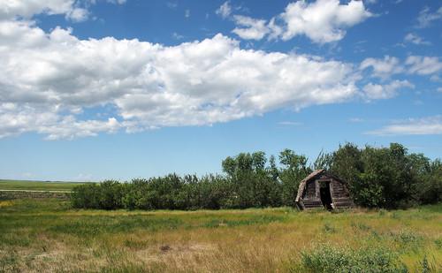 shed olympus prairie saskatchewan omd em5