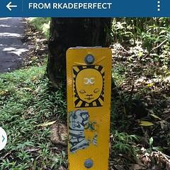 Found on the Big Island, Hawaii  thanks @rkadeperfect