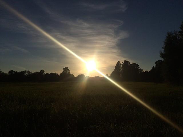 Header of Against the Sun