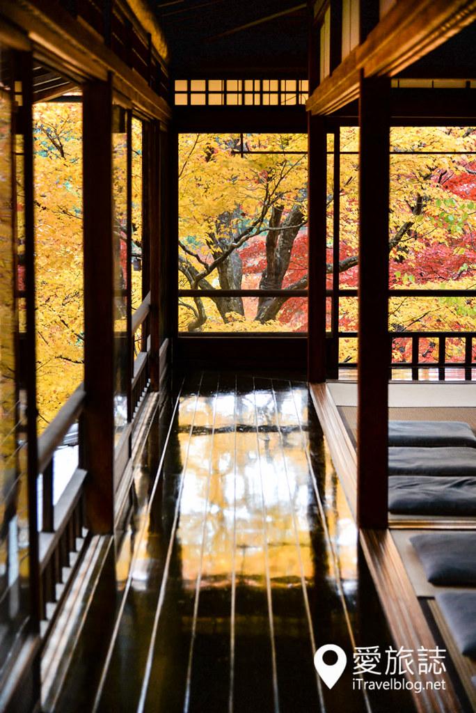 京都赏枫景点 琉璃光院 14