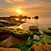 日出龜 ~~~吼    Just sunrise by kai6722