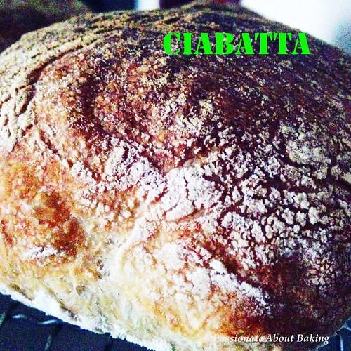 bread_ciabatta09