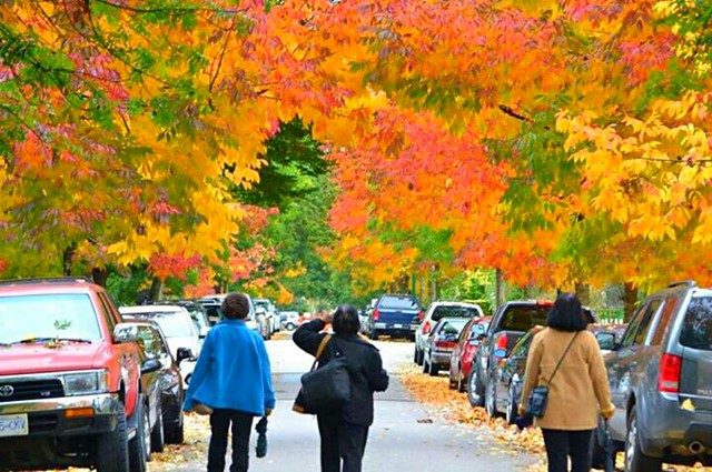the #autumn threes
